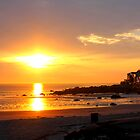 Brightness in Nahant by AntonLee