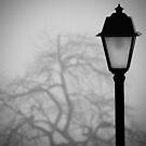 Lamp and Tree. by Kostas Pavlis