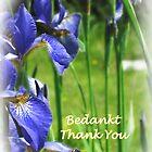 Thank You Iris by L J Fraser