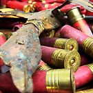 Shotgun Shells  by Andrina