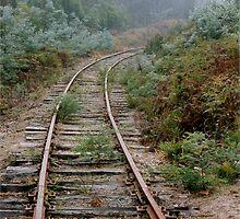 Rusty Rails into the Mist (Value Truth) by aaeiinnn