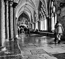 Westminster Abbey cloisters by Pat Shawyer