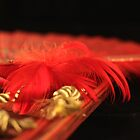 Red Feathers by magneta