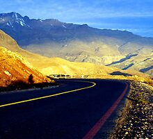 Highway across the Andes by Rick  Senley