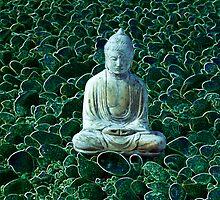 Buddha and Pebbles - Scotland - 6 by Caroline Webb