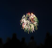 Fireworks by Dawn Palmerley
