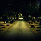 cemetery by Acia Lo