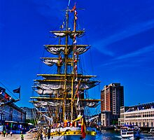 Sail Boston - Mircea ( back view) by LudaNayvelt