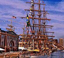 Sail Boston -  Cisne Branco by LudaNayvelt