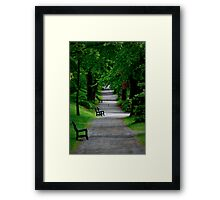 Path in The Park Framed Print