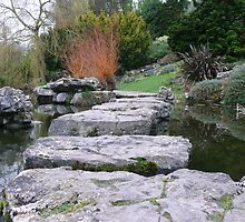 Rock Gardens by pcimages