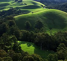 Green waves of Gippsland by Hans Kawitzki