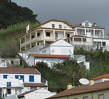 Which house is for sale? by pollyana correia