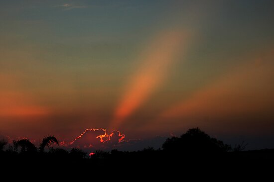 West Australian Sunset by Eve Parry