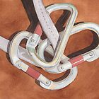Carabiners by Ken Powers