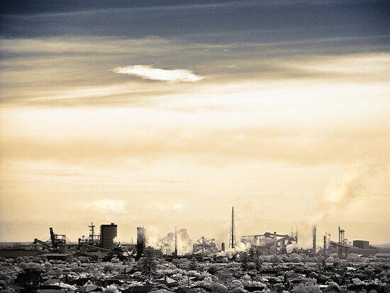Industrious by Mel Brackstone