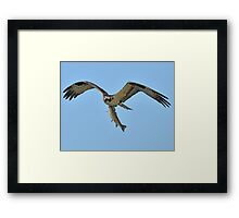 That's How You Catch a Trout! Framed Print