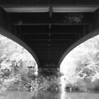 Under the Bridge by Heather Rampino