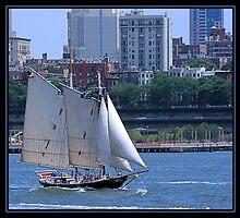 SAILING NEW YORK by BOLLA67