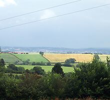 The view over river Exe and the fields and hills in South Devon  by Kasia B. Turajczyk