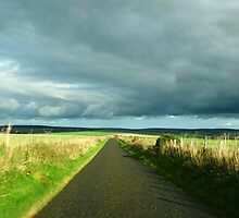 Scottish Country Road by A Leung