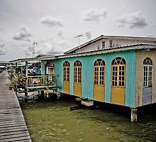 Waterhome, Bandar Seri Begawan, Brunei by Trishy