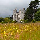 castlewellan by imagegrabber