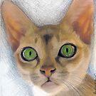 Singapura Kitty by Siamesecat