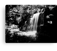 Water, light and shadow Canvas Print