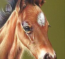 Foal #2 by Elena Kolotusha