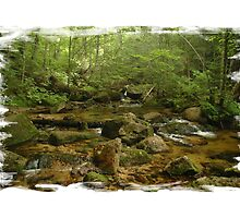 Maine Mountain Stream by Alana Ranney