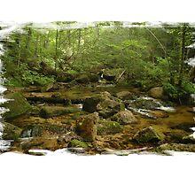 Maine Mountain Stream by Alana Ranney
