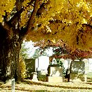 Georgetown Cementary by foxyphotography