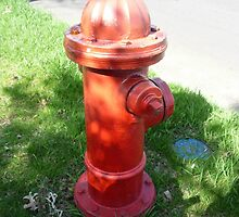 Red Hydrant-Dog's Best Friend by Bea Godbee
