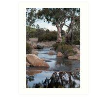 Reedy Creek waterfall Art Print