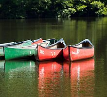 Canoes on the Chattahoochee River - Color Version by Maria Schlossberg