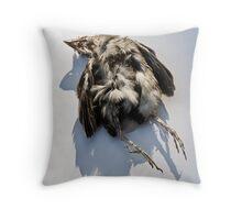 Poor Little Dead Bird Throw Pillow