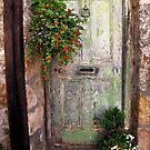 Green Door by Mike Honour