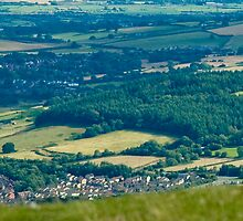 Guarding the Valley by robdavies