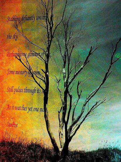Dead Tree Standing. by Lynne Haselden