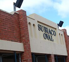Subiaco Oval by DamienGarth