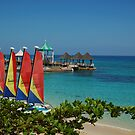 Hobie cats on the beach by tgmurphy