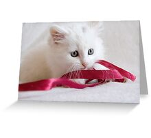 Oliver in a Twist Greeting Card