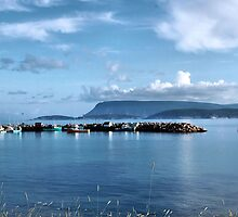 Ingonish Harbour by Janes Blond