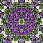 Oriental Garden Kaleidoscope by Marie Sharp