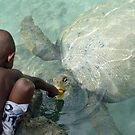 The Boy and his Turtle - Location: Vanuatu by gbphotography