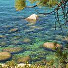 Tahoe Waters by Barbara  Brown