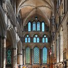 Salisbury Cathedral by Peter Hammer