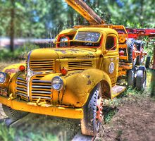 Old log truck by pdsfotoart