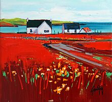 Orange Roof, Barra by scottnaismith